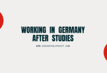 Photo of Can you Work in Germany after completion of your Studies there?