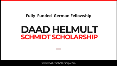 Photo of DAAD Helmut Schmidt Scholarship Programme 2021