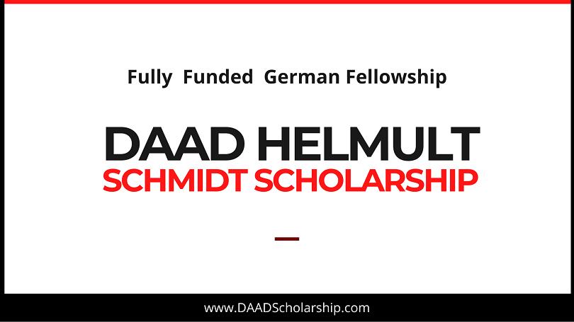DAAD Helmut Schmidt Scholarship Programme 2021